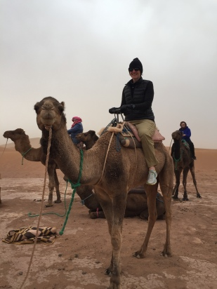 riding a camel in the Sahara …..done!