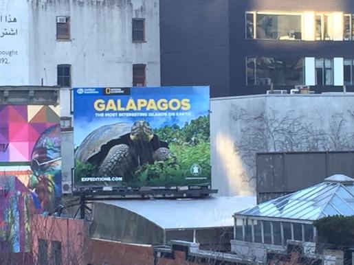Galapagos!!